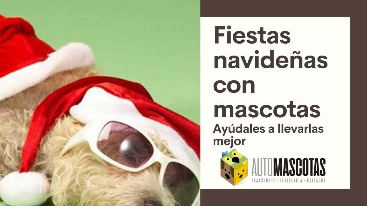 Fiestas navideñas con mascotas