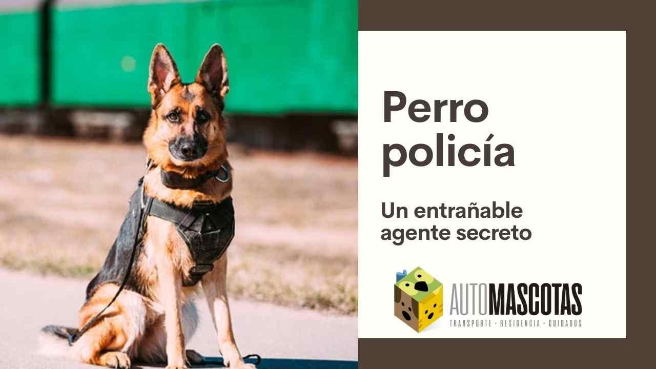 Perros de Policía, un entrañable agente secreto
